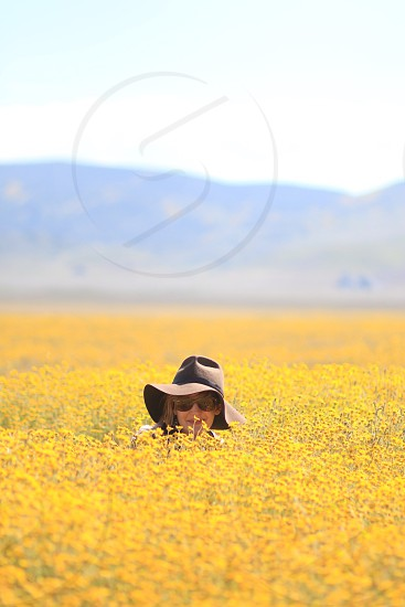 woman wearing hat and sunglasses sitting in the middle of yellow flower field during daytime photo