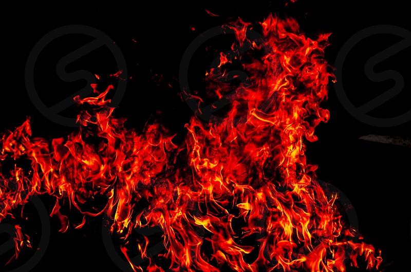 fire flame danger heat symbolism lion photo