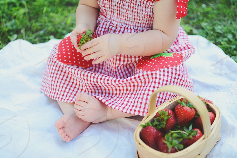 girl in white and red checked dress holding red strawberry fruit sitting on white textile on green grass during daytime photo
