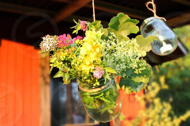 flowers in mason jars photo