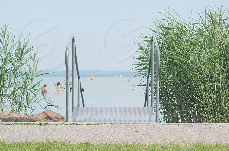 Metal Stairs to Lake Balaton with Green Reeds on a Summer Day photo