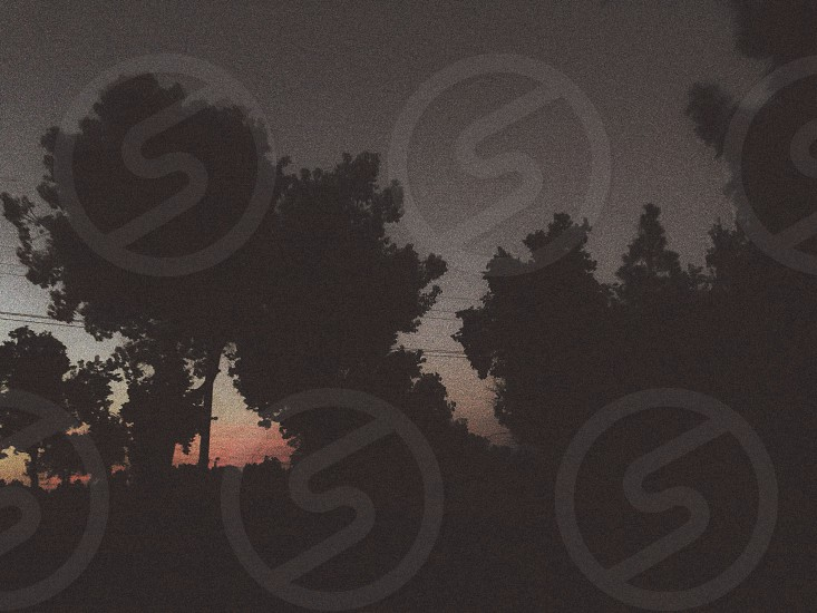 Sunset pink black  photo
