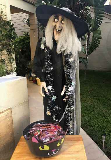 Halloween 1 photo
