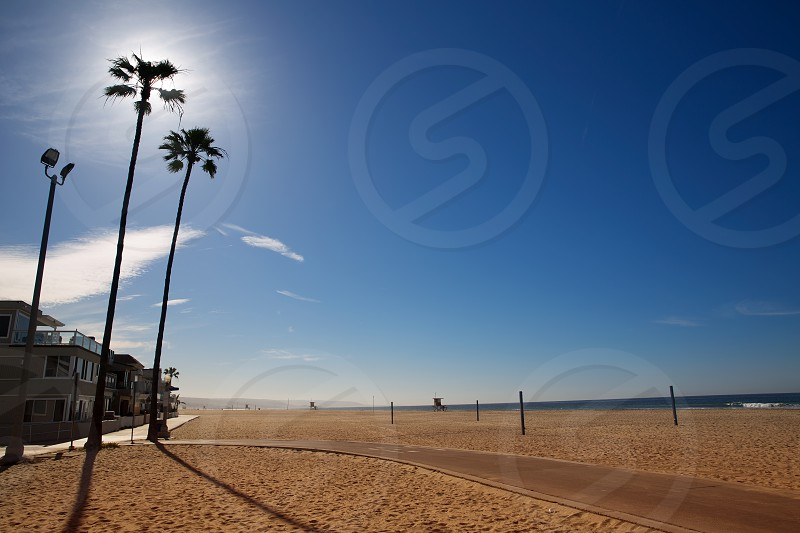 California Newport Beach with high palm trees on sand shore photo