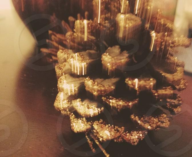 The Golden Acorn photo