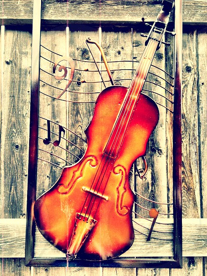 violin wall art photo