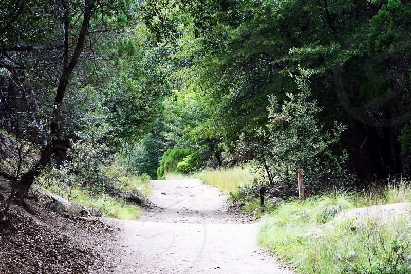 dirt path road photo photo