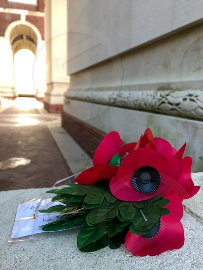 Outdoor day vertical portrait colour Thiepval France Somme western front Battle site battleground historic historical red Poppies poppy flowers remembrance commemoration monument respect stone WWI WW1 World War One First World War Memorial leaves masonry brick red brick photo