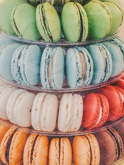 Circles  cookies macaroons  sweets baked tasty lined up colorful photo
