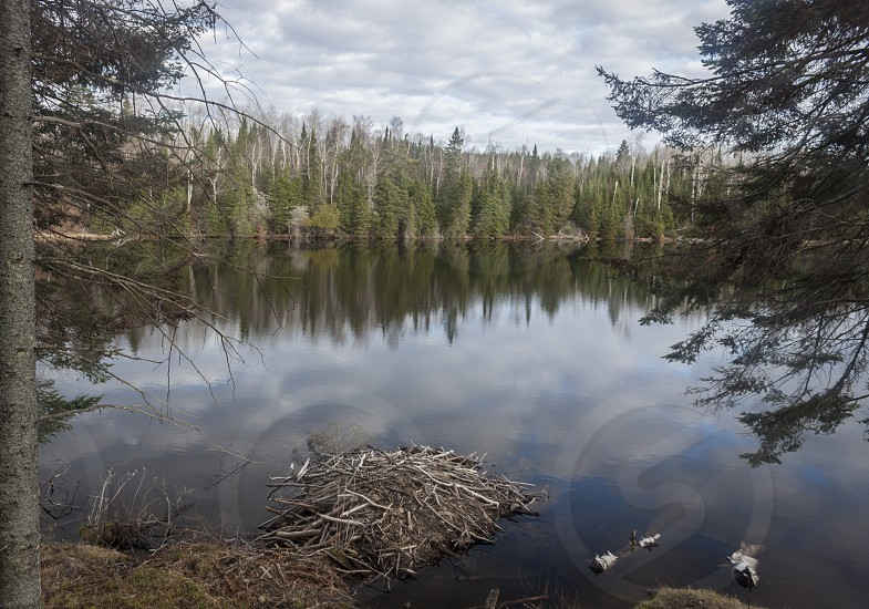 Beaver dam clouds mirrored by lake up north photo