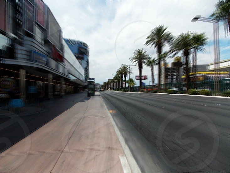 view of street lined with buildings and palm trees photo