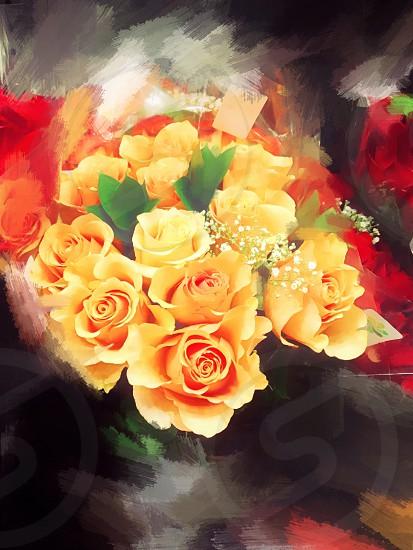 Orange roses orange roses beautiful painting artwork original original artwork photo