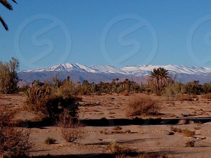 Skoura morocco photo