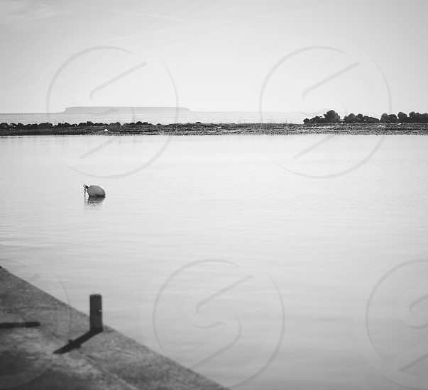 body of water during daytime in greyscale photography photo