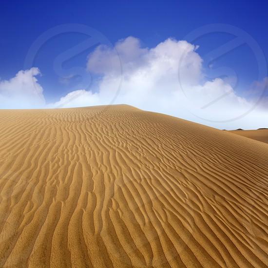 Desert sand dunes in Maspalomas Oasis Gran Canaria at Canary islands photo