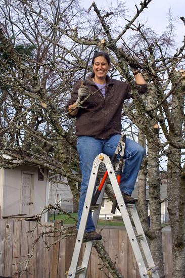 Person woman gardener pruning tree pruning ladder happy tree photo