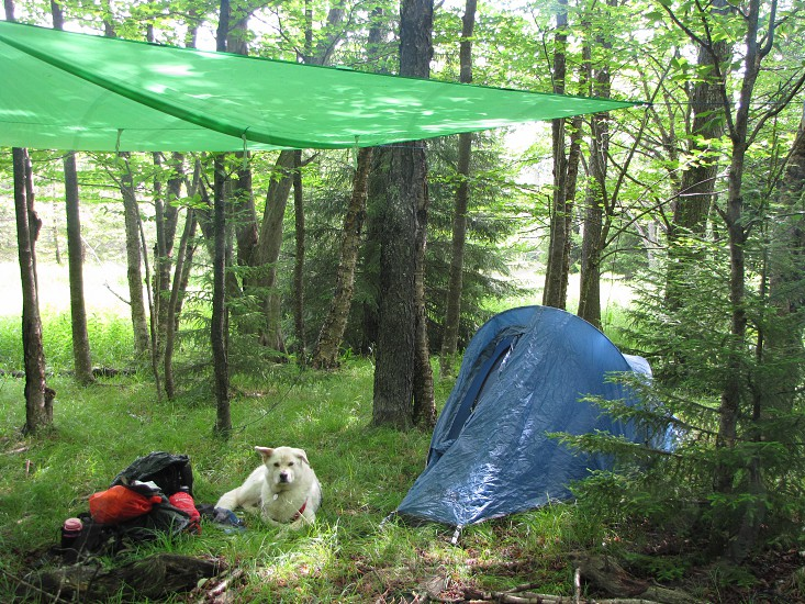 Back-country camping. photo