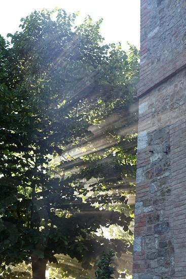 Rays of light photo