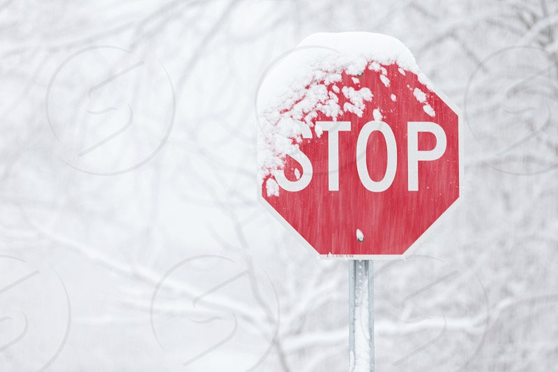 A stop sign in the snow photo