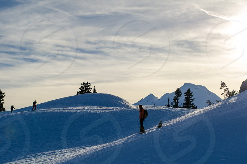 Pondering the winter sunshine on Mt. Baker photo