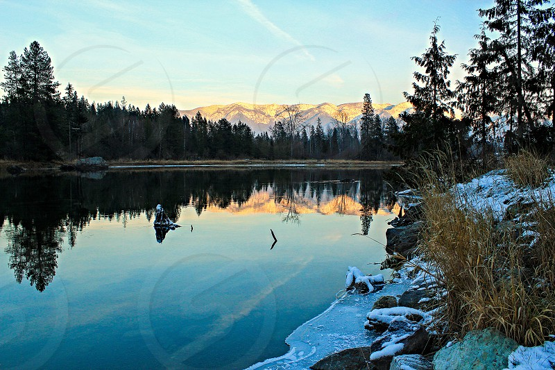 body of water surrounded pine trees and snow capped mountains photo
