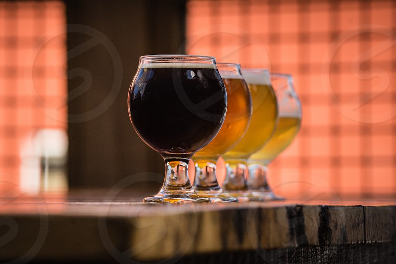 beer craft beer beverages cold brew four beers photo