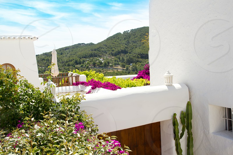 Ibiza white houses and flowers in Sant Miquel de Balansat photo
