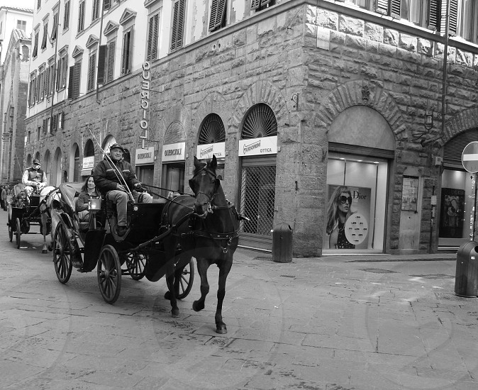 man riding carriage photo