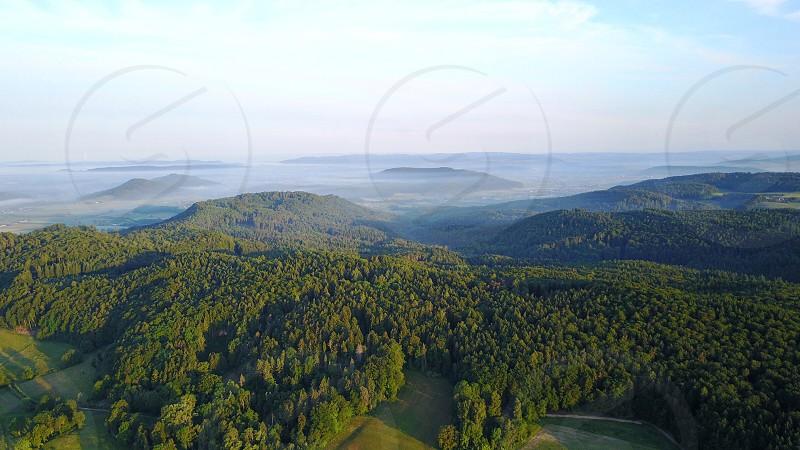 Fog morning trees forest switzerland sky photo