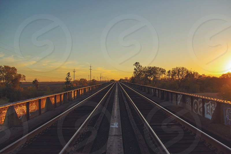 train tracks near green trees photo