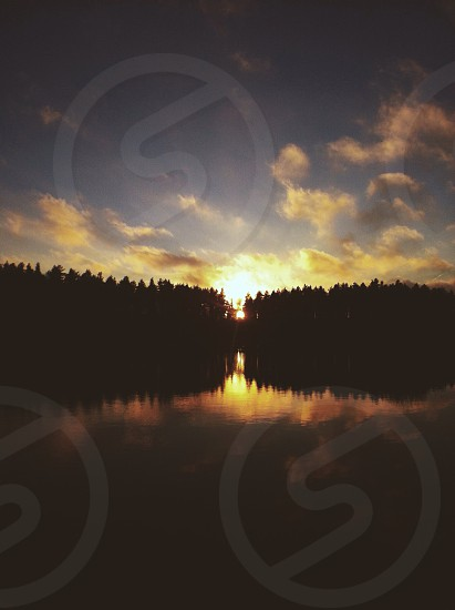 sunset behind trees photo