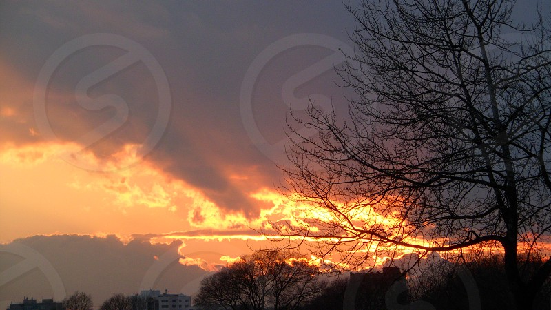 sunset city sun sky clouds tree sunlight traveling journey tour enjoy landscape photo