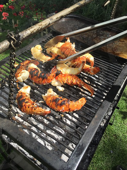 Grill lobster barbecue foodseafoodmeal eat photo
