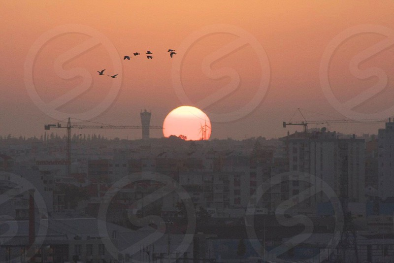 photography of concrete buildings during sunset photo