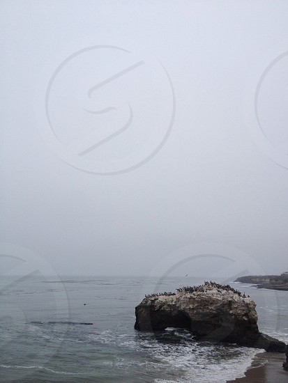 gray rock at the seashore photo