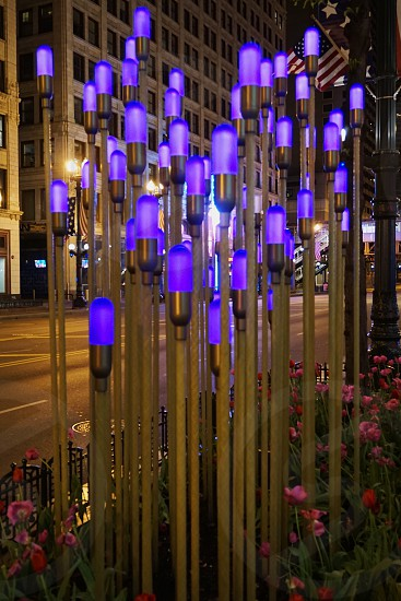 Ultra violet; violet; Chicago; street decorations; Michigan Ave photo