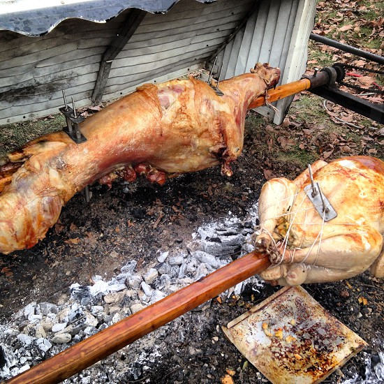 meat on rotissarie style fire photo
