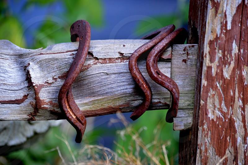 Old rusty bent horseshoes photo