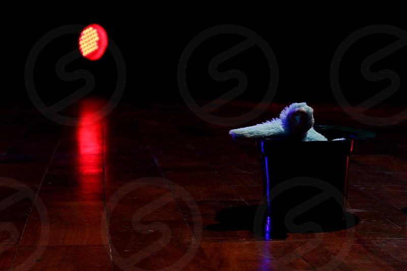 magic galley  rabbit stage  theater  artist  dark  lights  lighting  led flooring  wood  photo