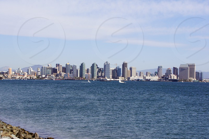 Sailboats in the harbor in San Diego California with the downtown skyline in the background photo