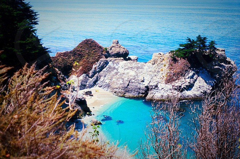 California big sur spring sun ocean cove waterfall blue green trees flowers  photo