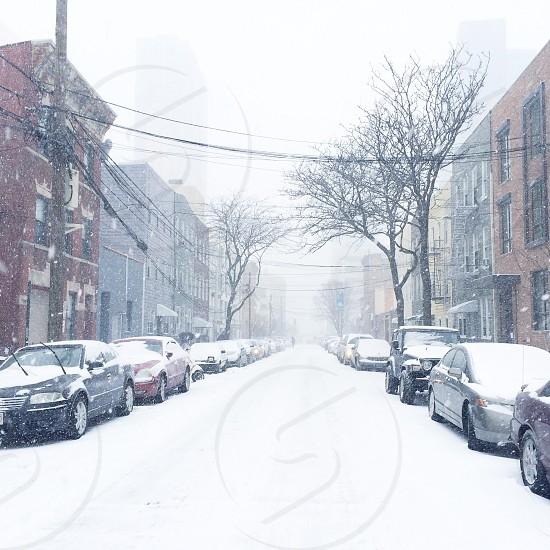 Lic pre-blizzard photo