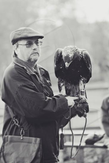 black and white man older man cap hat eagle falconry bird animal business england mono photo