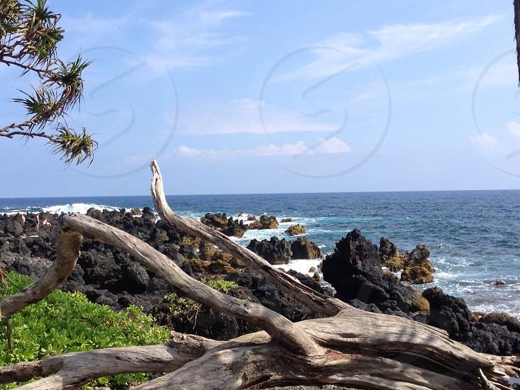 Maui 2013 photo