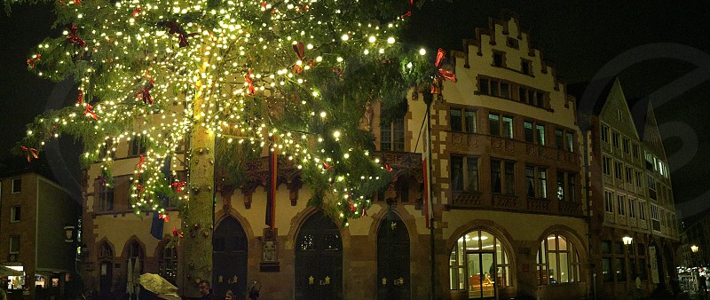 travel festival tree lamps square Germany  photo