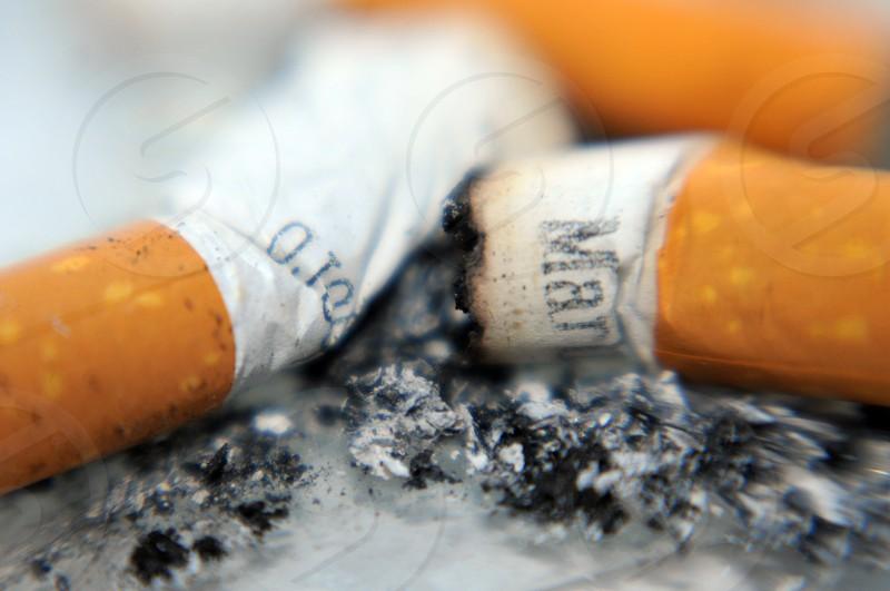 Cigarette butts photo