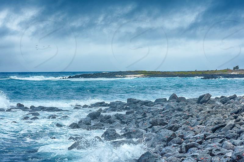 Santa Fe Galapagos photo