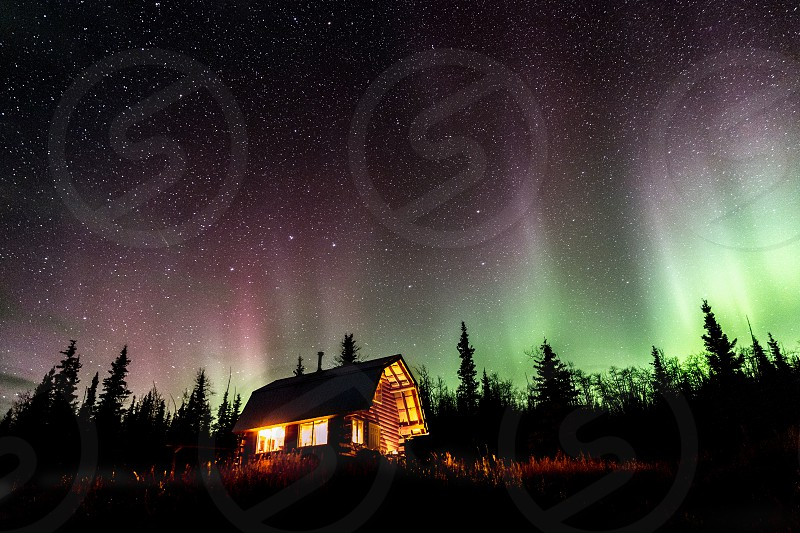 The Northern Lights dance above Alaska. Aurora Borealis above cabin photo