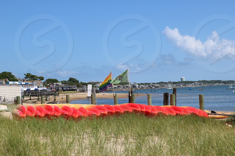 Colorful kayaks are lined up on a beach photo
