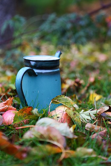 blue watering pot on green grass lawn photo